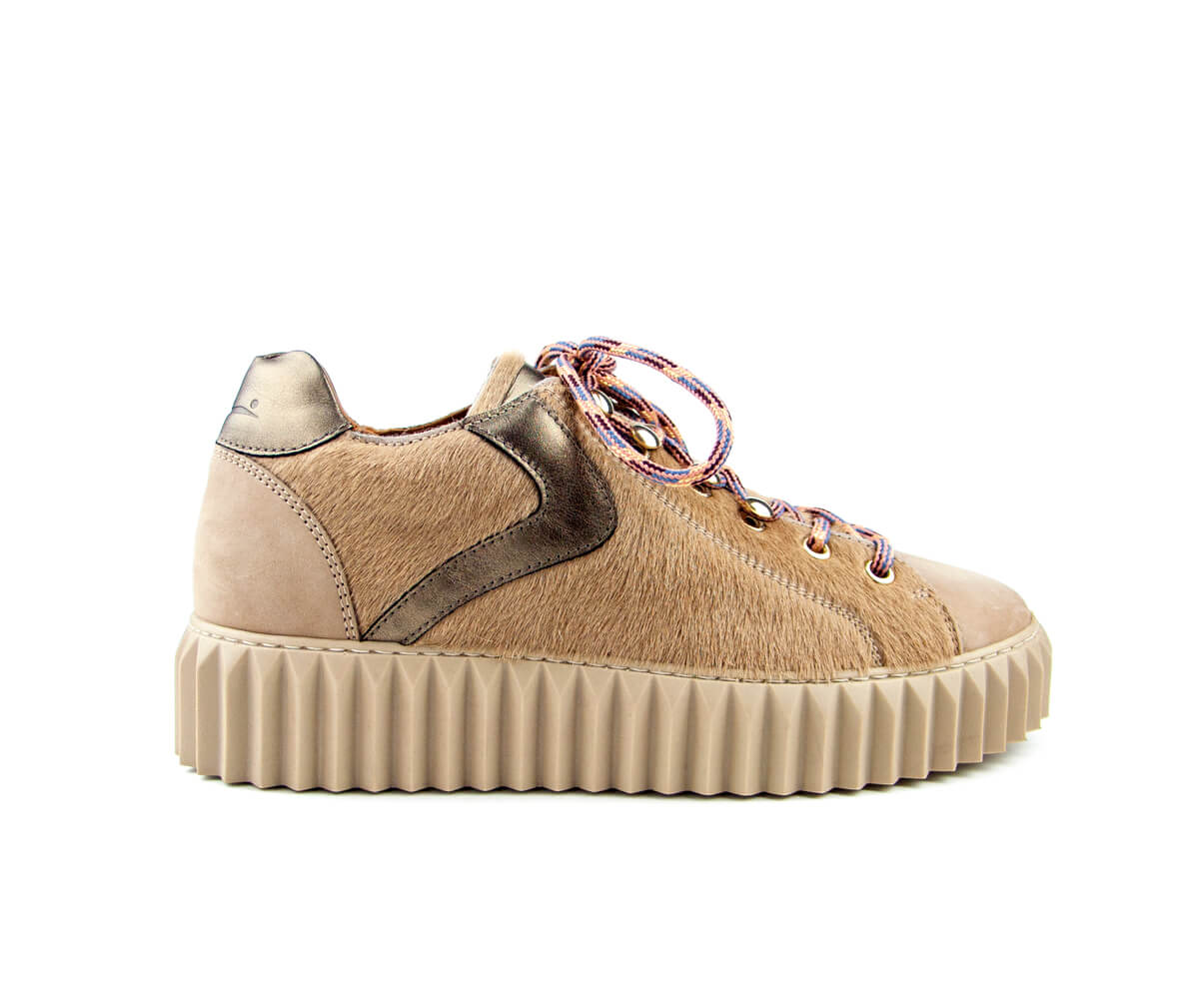 002 ecla scarpe rgb